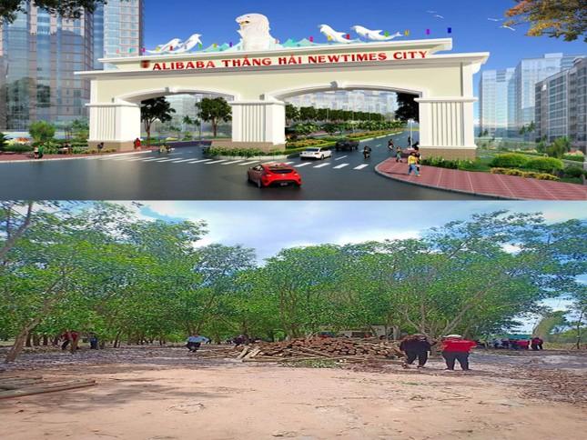 Địa ốc Alibaba vươn vòi 'vẽ' dự án ở Bình Thuận ảnh 2
