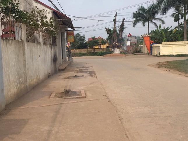 Đòi lại vỉa hè ở Hà Nội: Cây xanh có tội gì mà bị chặt? ảnh 1