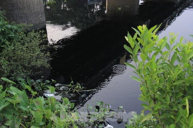 Cả dòng sông đen kịt, bốc mùi hôi thối ở Hải Dương ảnh 7