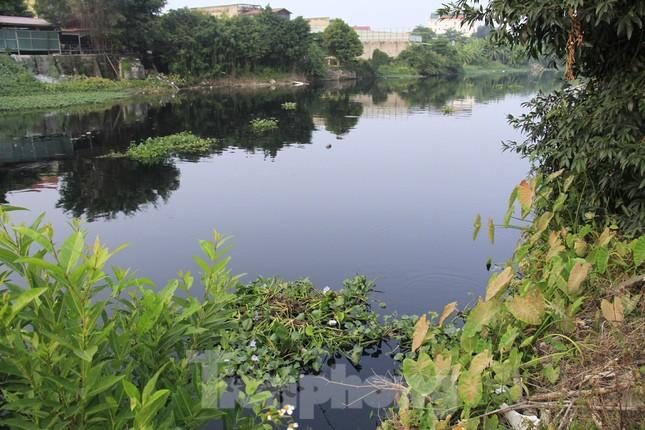 Cả dòng sông đen kịt, bốc mùi hôi thối ở Hải Dương ảnh 5