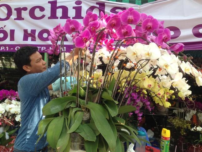 27 Tết, hoa xuân sớm giảm giá, xả hàng ảnh 7