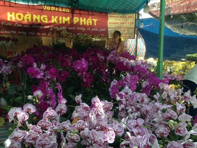 27 Tết, hoa xuân sớm giảm giá, xả hàng ảnh 8