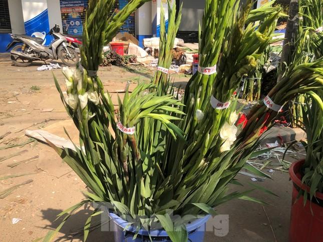 Nghìn nghịt người chen chân ở chợ hoa lớn nhất Sài Gòn ngày cuối năm ảnh 30