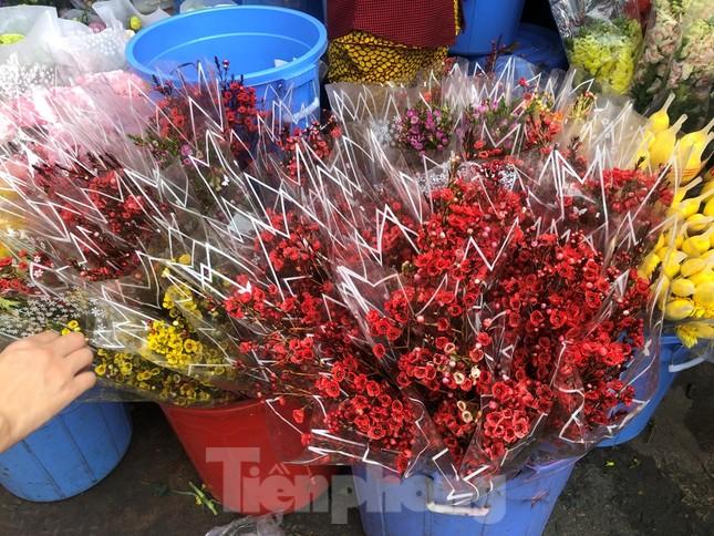 Nghìn nghịt người chen chân ở chợ hoa lớn nhất Sài Gòn ngày cuối năm ảnh 15