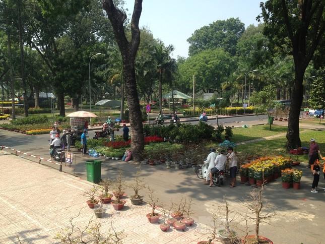 29 tết ở Sài Gòn: Đào bung sắc, sức mua rất chậm ảnh 7