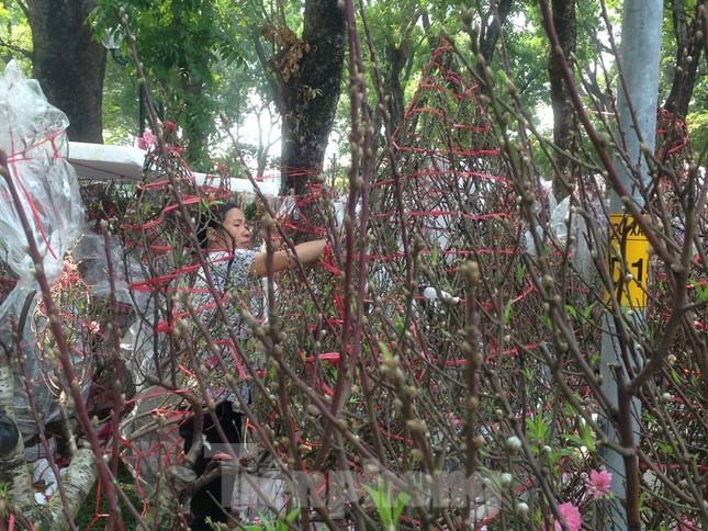 29 tết ở Sài Gòn: Đào bung sắc, sức mua rất chậm ảnh 3