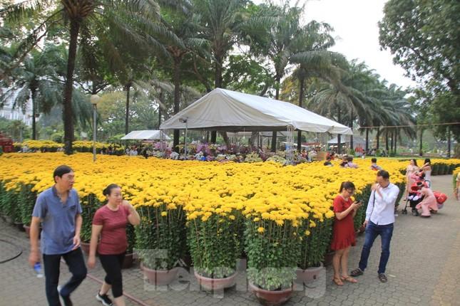 29 tết ở Sài Gòn: Đào bung sắc, sức mua rất chậm ảnh 15