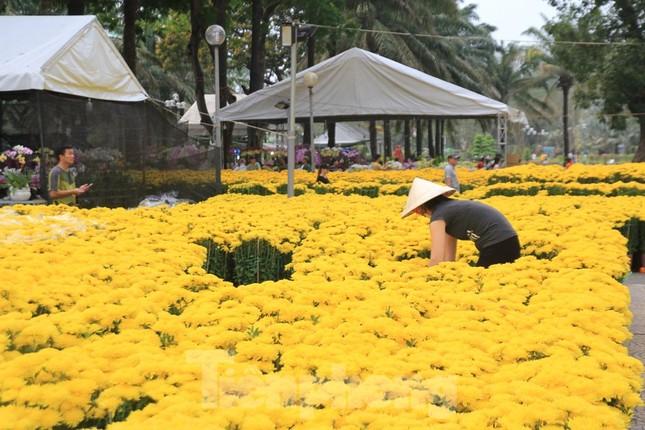 29 tết ở Sài Gòn: Đào bung sắc, sức mua rất chậm ảnh 1
