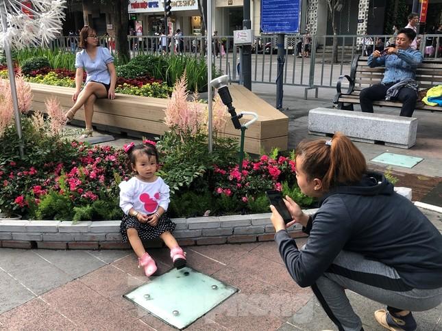 Vì sao tiểu cảnh ở phố đi bộ Nguyễn Huệ tả tơi ảnh 1