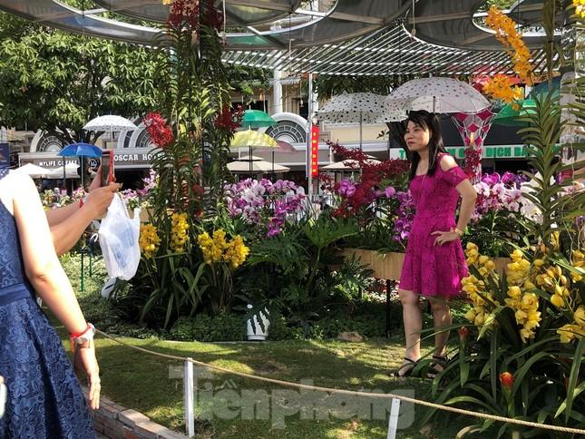 Vì sao tiểu cảnh ở phố đi bộ Nguyễn Huệ tả tơi ảnh 25