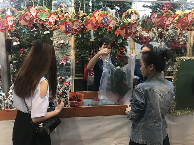 Dân Sài Gòn 'săn' tùng thơm giá rẻ chơi Noel ảnh 8