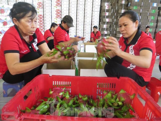 Việt Nam tăng đầu tư mạnh vào Ấn Độ ảnh 2