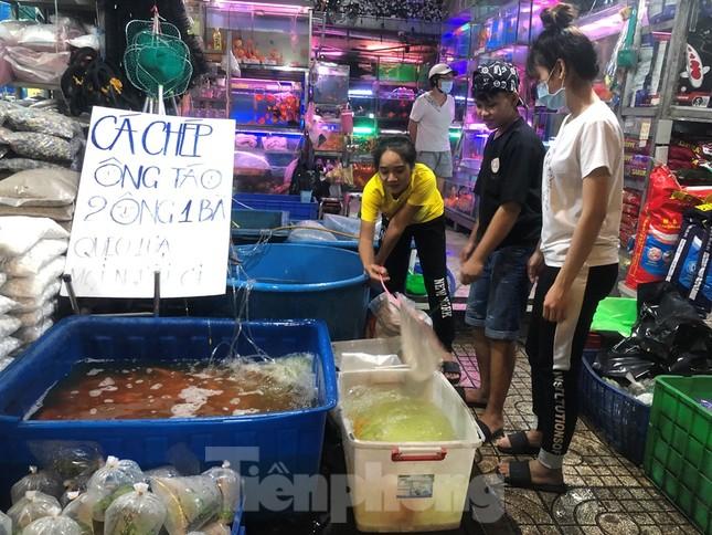 Tối muộn, người TPHCM tranh thủ mua cá chép cúng ông Táo ảnh 5