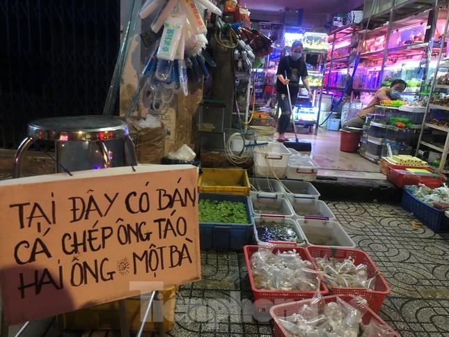 Tối muộn, người TPHCM tranh thủ mua cá chép cúng ông Táo ảnh 6