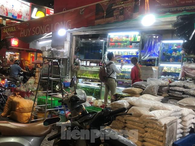 Tối muộn, người TPHCM tranh thủ mua cá chép cúng ông Táo ảnh 3
