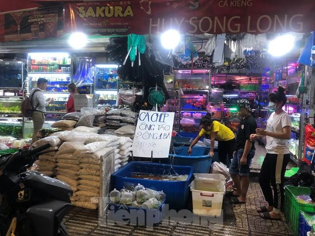 Tối muộn, người TPHCM tranh thủ mua cá chép cúng ông Táo ảnh 8