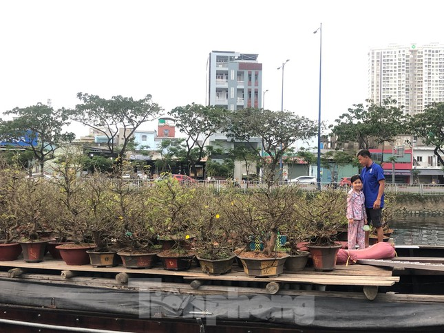 Chèo thuyền SUP lướt sông Sài Gòn đi chợ hoa Tết ảnh 9