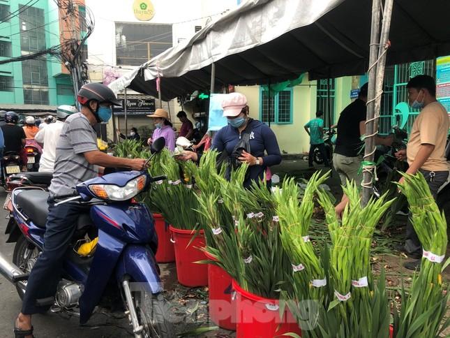 TPHCM: Chợ hoa Hồ Thị Kỷ 'xả hàng' kéo khách ảnh 13