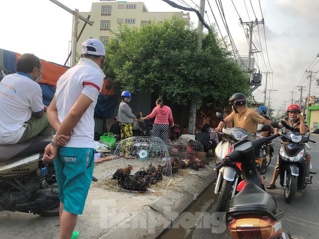 Sáng mùng 3 Tết, dân Sài Gòn xếp hàng vào siêu thị mua gà cúng ảnh 7