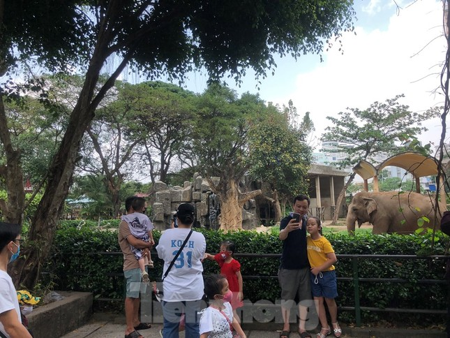 Du khách thích mê khi được vào chuồng ôm thú cho ăn ảnh 12