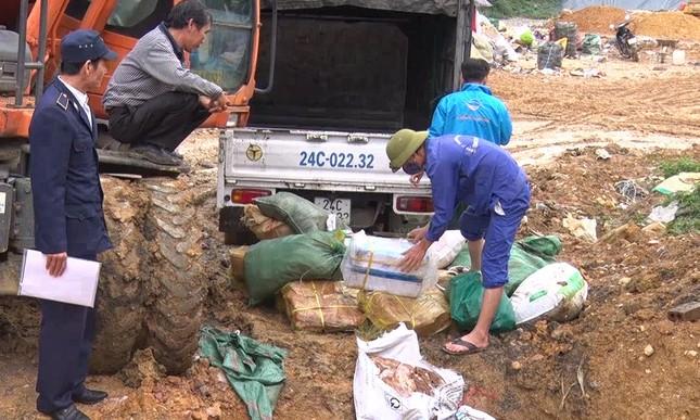 Bắt giữ, tiêu hủy gần 770kg thực phẩm đông lạnh nhập lậu ảnh 1