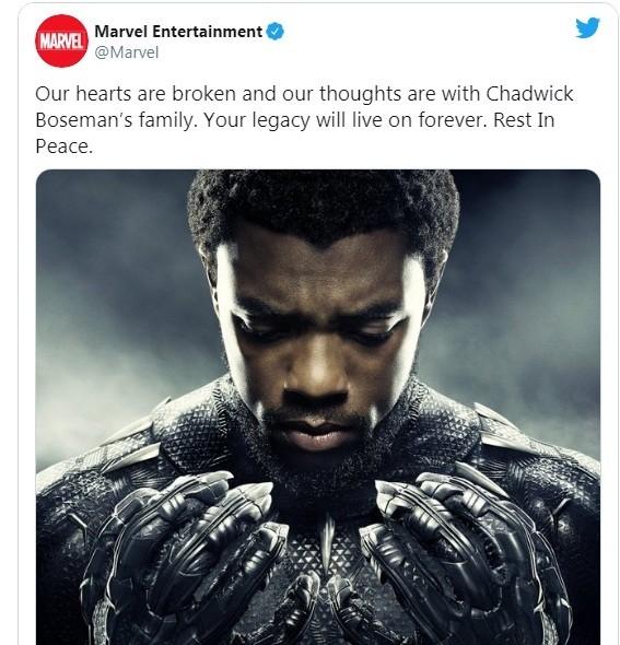 """Chadwick Boseman: Lời tưởng nhớ của các diễn viên Marvel sau cái chết """"sốc"""" của """"báo đen""""  ảnh 6"""