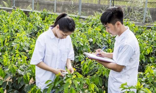 Học viện Nông nghiệp Việt Nam tuyển gần 6.000 chỉ tiêu ảnh 1