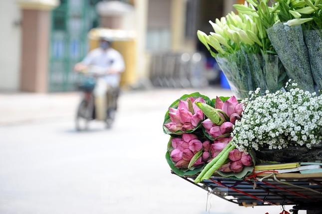 Hương sen toả ngát phố phường Hà Nội ảnh 6