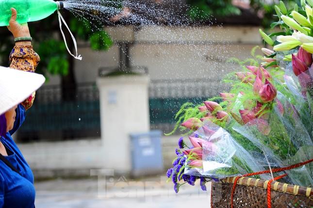 Hương sen toả ngát phố phường Hà Nội ảnh 2
