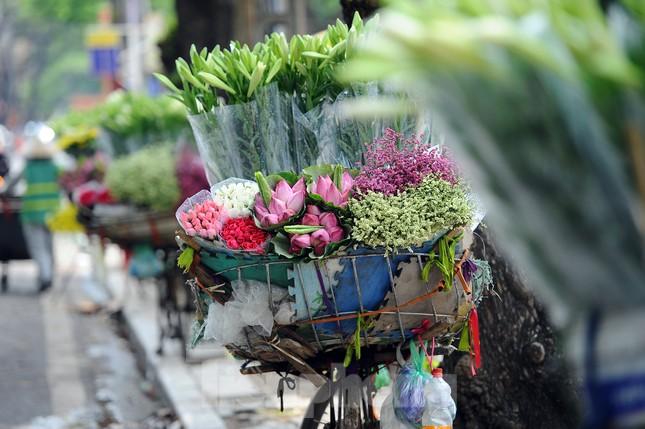 Hương sen toả ngát phố phường Hà Nội ảnh 7