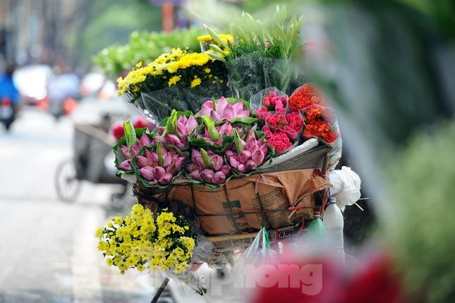 Hương sen toả ngát phố phường Hà Nội ảnh 1