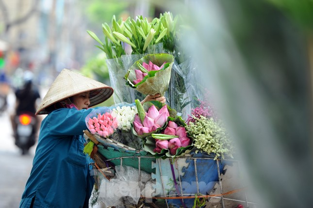Hương sen toả ngát phố phường Hà Nội ảnh 10