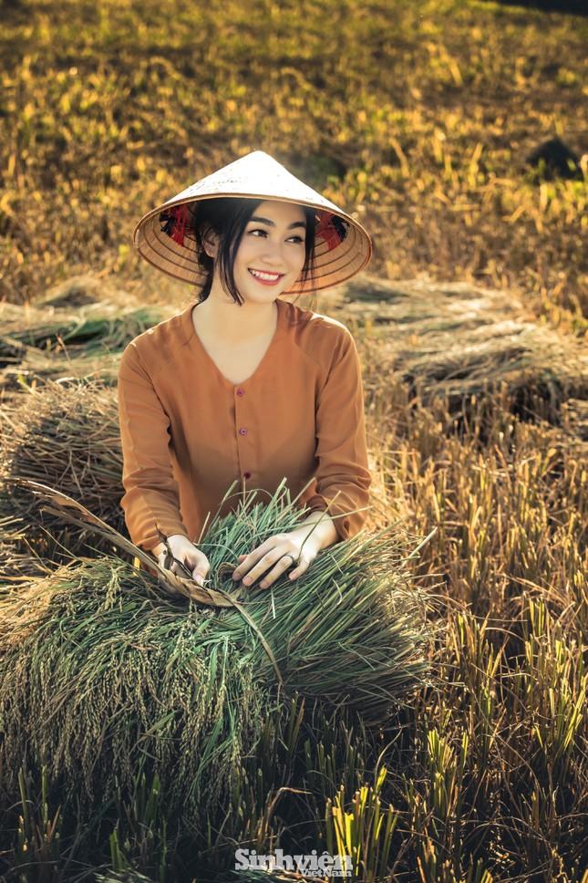 Hoa khôi Tài chính xinh đẹp khi hóa thân thành nông dân trên cánh đồng Mường Thanh ảnh 6