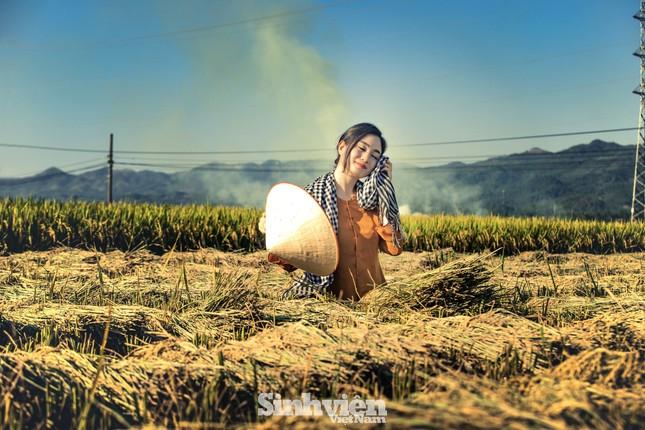 Hoa khôi Tài chính xinh đẹp khi hóa thân thành nông dân trên cánh đồng Mường Thanh ảnh 5