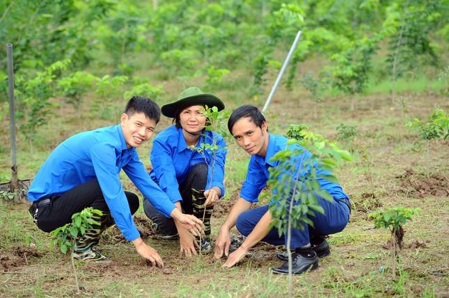"""Triển khai mô hình """"Vườn ươm Vì một Việt Nam xanh"""" ảnh 6"""