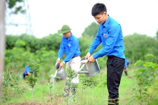 """Triển khai mô hình """"Vườn ươm Vì một Việt Nam xanh"""" ảnh 3"""