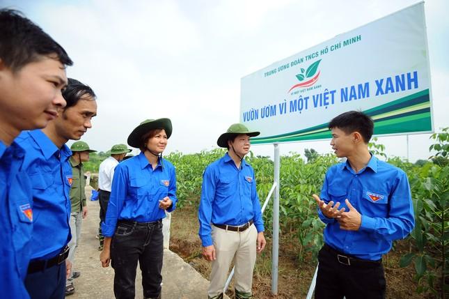 """Triển khai mô hình """"Vườn ươm Vì một Việt Nam xanh"""" ảnh 1"""