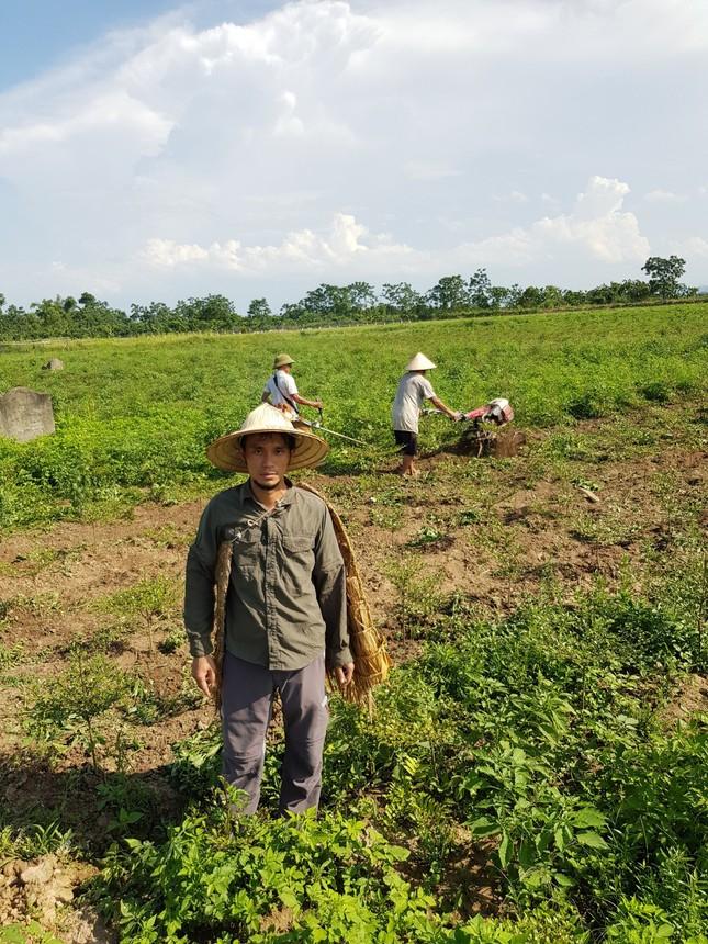 """Triển khai mô hình """"Vườn ươm Vì một Việt Nam xanh"""" ảnh 5"""