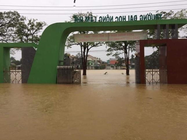 ĐH Huế và ĐH Đà Nẵng được gia hạn thời gian nhập học vì mưa lũ ảnh 2