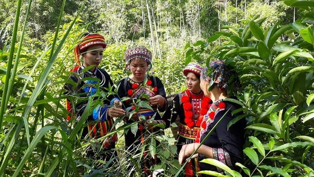 Khởi nghiệp từ sản phẩm truyền thống để bảo vệ văn hóa của người Dao ảnh 1