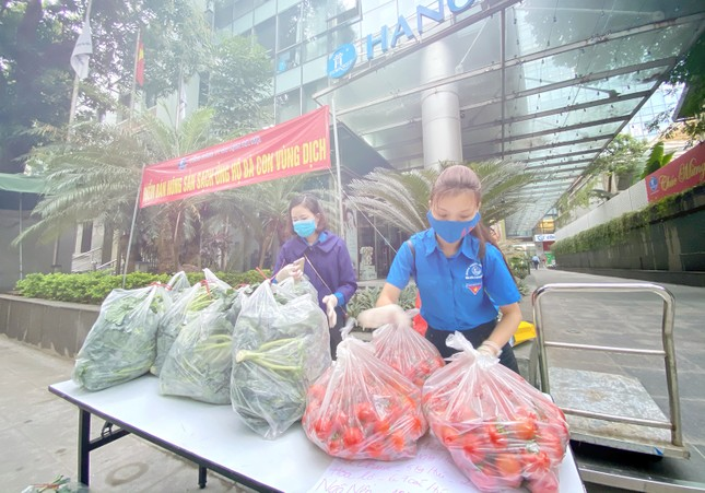 Trắng đêm hỗ trợ người dân Hải Dương tiêu thụ nông sản ảnh 8