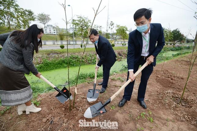 Sinh viên, giảng viên Học viện Nông nghiệp Việt Nam hưởng ứng trồng 5.000 cây xanh ảnh 5