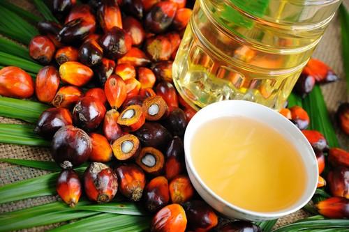 Loại dầu ăn nào thực sự tốt nhất cho bạn? ảnh 10