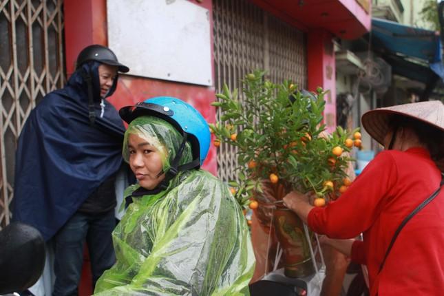 Đào quất phá giá chiều 30 Tết, người Hà Nội đội mưa đi mua ảnh 3