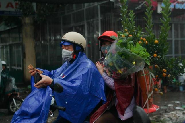 Đào quất phá giá chiều 30 Tết, người Hà Nội đội mưa đi mua ảnh 5