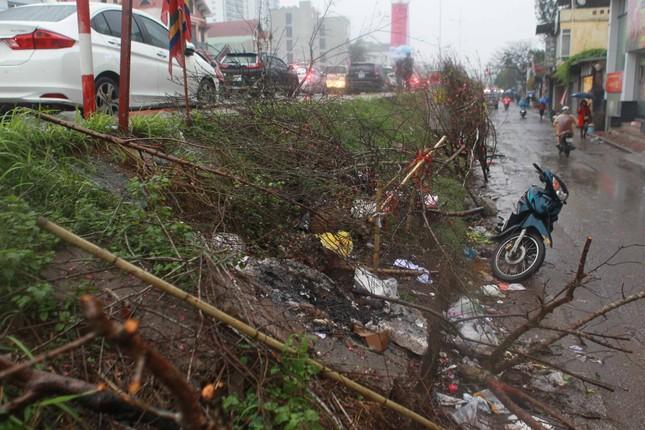 Đào quất phá giá chiều 30 Tết, người Hà Nội đội mưa đi mua ảnh 11