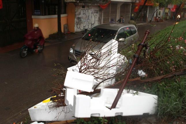 Đào quất phá giá chiều 30 Tết, người Hà Nội đội mưa đi mua ảnh 12