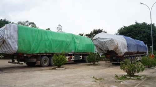 Công an Nghệ An bắt đoàn xe chở gỗ vượt 300% tải trọng ảnh 1