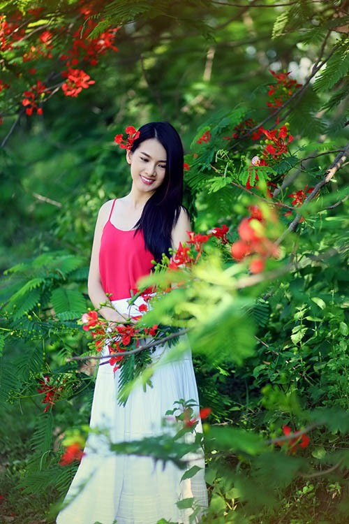 Anh Thư đẹp rạng rỡ bên hoa phượng ảnh 6