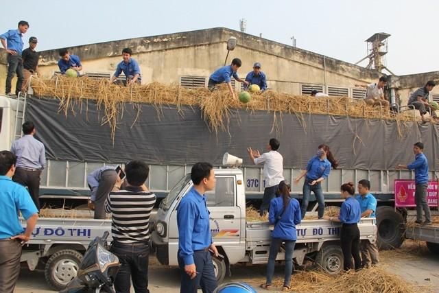 Người dân xứ Nghệ mua dưa ủng hộ nông dân Quảng Ngãi ảnh 4